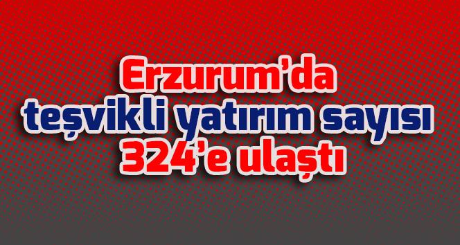 Erzurum'da teşvikli yatırım sayısı 324'e ulaştı