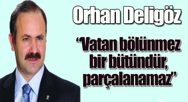 """Milletvekili Deligöz: """"Vatan bölünmez bir bütündür, parçalanamaz"""""""