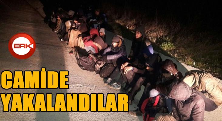 Camide 15 kaçak göçmen yakalandı