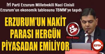 Cinisli: Erzurum'un nakit parası hergün piyasadan emiliyor