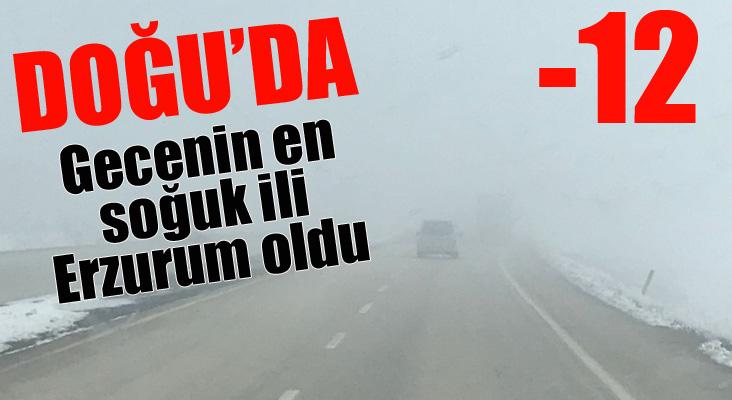 Doğu Anadolu'da soğuk hava ve sis