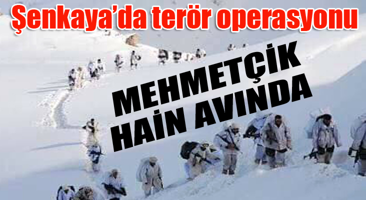 Şenkaya'da terör operasyonu