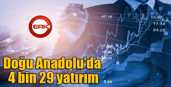 Doğu Anadolu'da 4 bin 29 yatırım