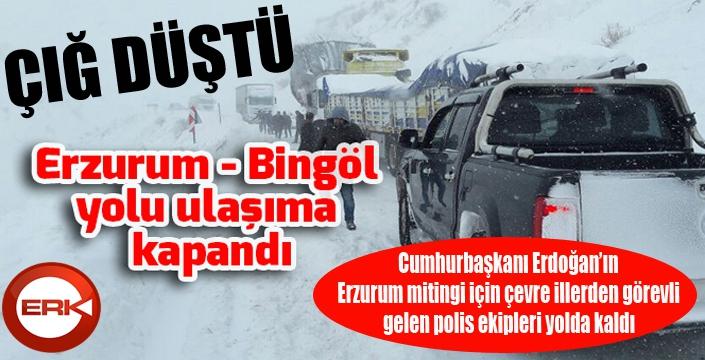Erzurum-Bingöl karayolu çığ düşmesi sonucu ulaşıma kapandı