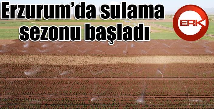 Erzurum'da sulama sezonu başladı