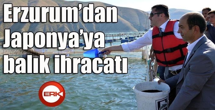 Erzurum'dan Japonya'ya balık ihracatı