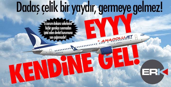 EYY ANADOLU JET KENDİNE GEL!!!