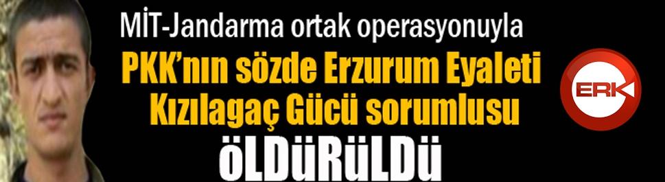 MİT-Jandarma ortak operasyonuyla Gri Liste'deki terörist öldürüldü
