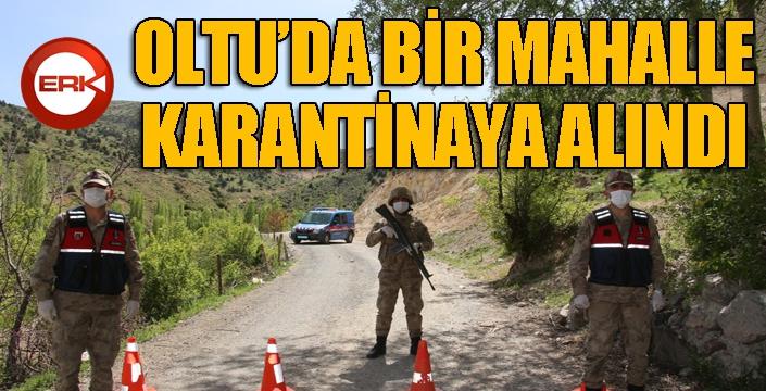 Oltu'da bir mahalle karantinaya alındı...