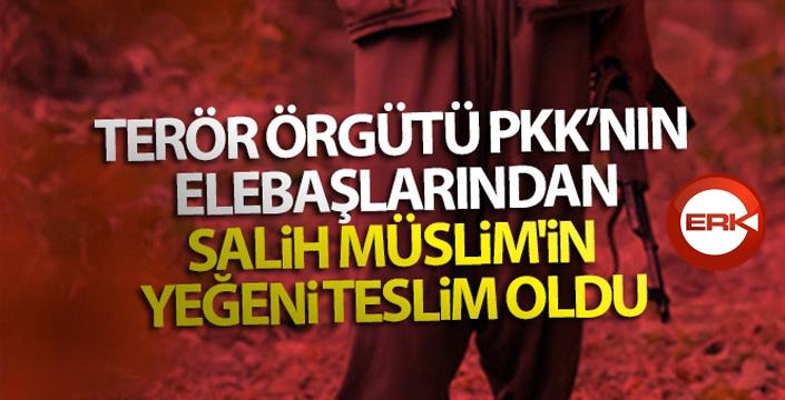 Terör örgütü PKK'nın elebaşlarından Salih Müslim'in yeğeni teslim oldu