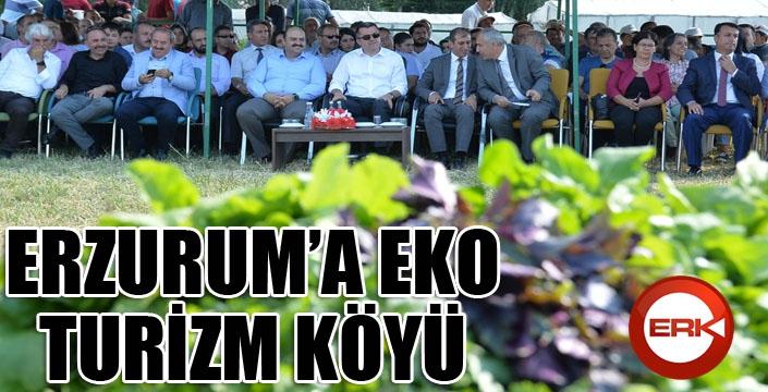 """Vali Memiş: """"Erzurum'a eko turizm köyü yapmayı planlıyoruz"""""""