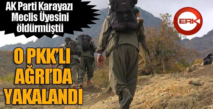 Yakalanan terörist AK Parti Karayazı Meclis Üyesinin katili çıktı